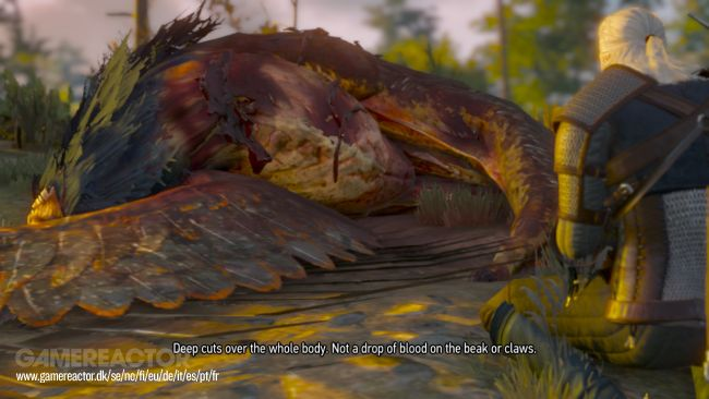 Der Switcher ist zurück: Screenshots zur Hybridversion von The Witcher 3: Wild Hunt