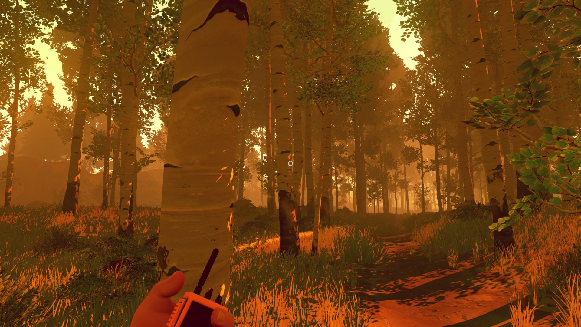 В центре игры находится генри, наблюдатель одной из пожарных башен, который сталкивается с последствиями йеллоустонского пожара года.