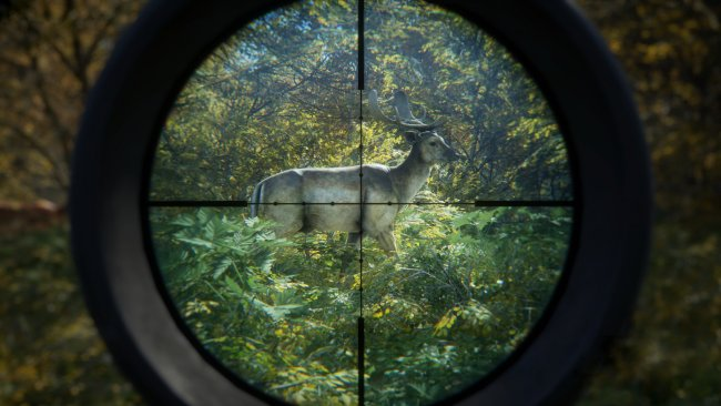 theHunter: Call of the Wild kommt für PS4 und Xbox One