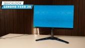 Lenovo Y25g-30: Quick Look