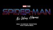 Spider-Man: No Way Home - Official Teaser