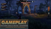 The Elder Scrolls Online: Blackwood - Rundgang mit den TESO-Entwicklern von Zenimax Online Studios
