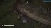 Assassin's Creed Valhalla - Easter-Eggs und Anspielungen zum Thema Asterix & Obelix (Zorn-der-Druiden-DLC)